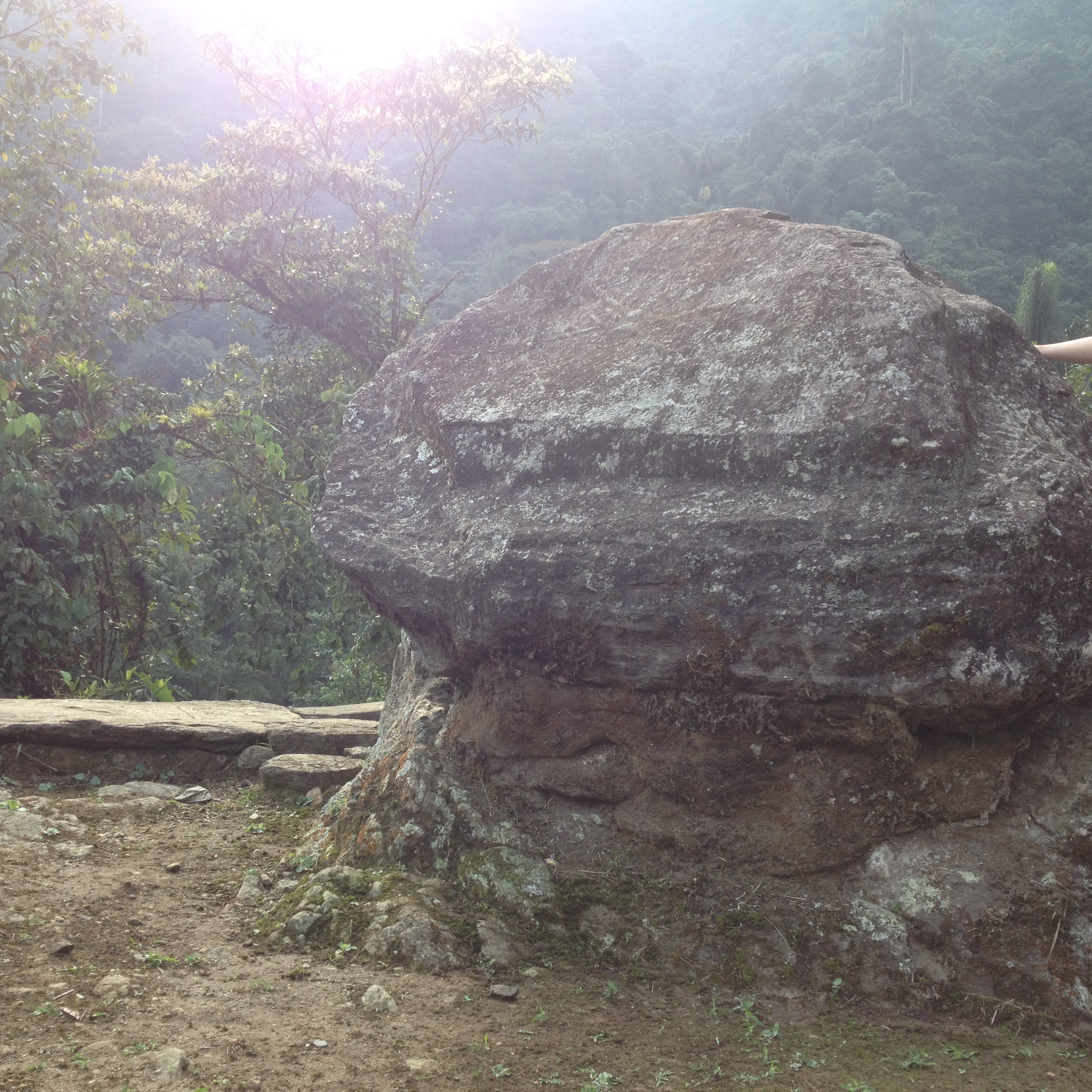 It's a big rock . . . shaped like a frog.  The Tayrona worshipped it.