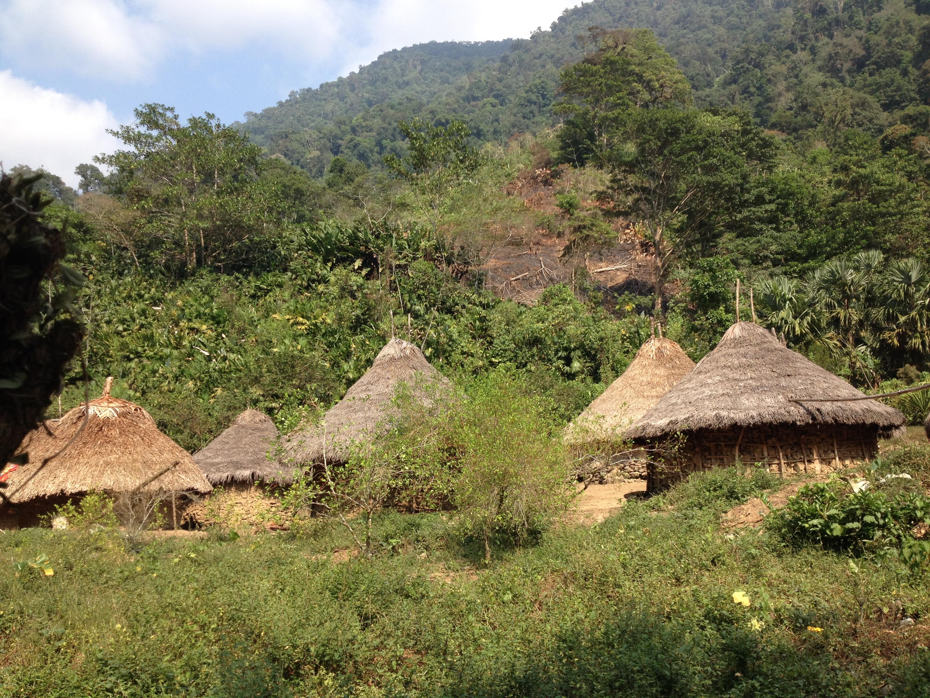 A settlement of the Tayrona we passed on the hike.  The huts are made of mud with thatched roofs.