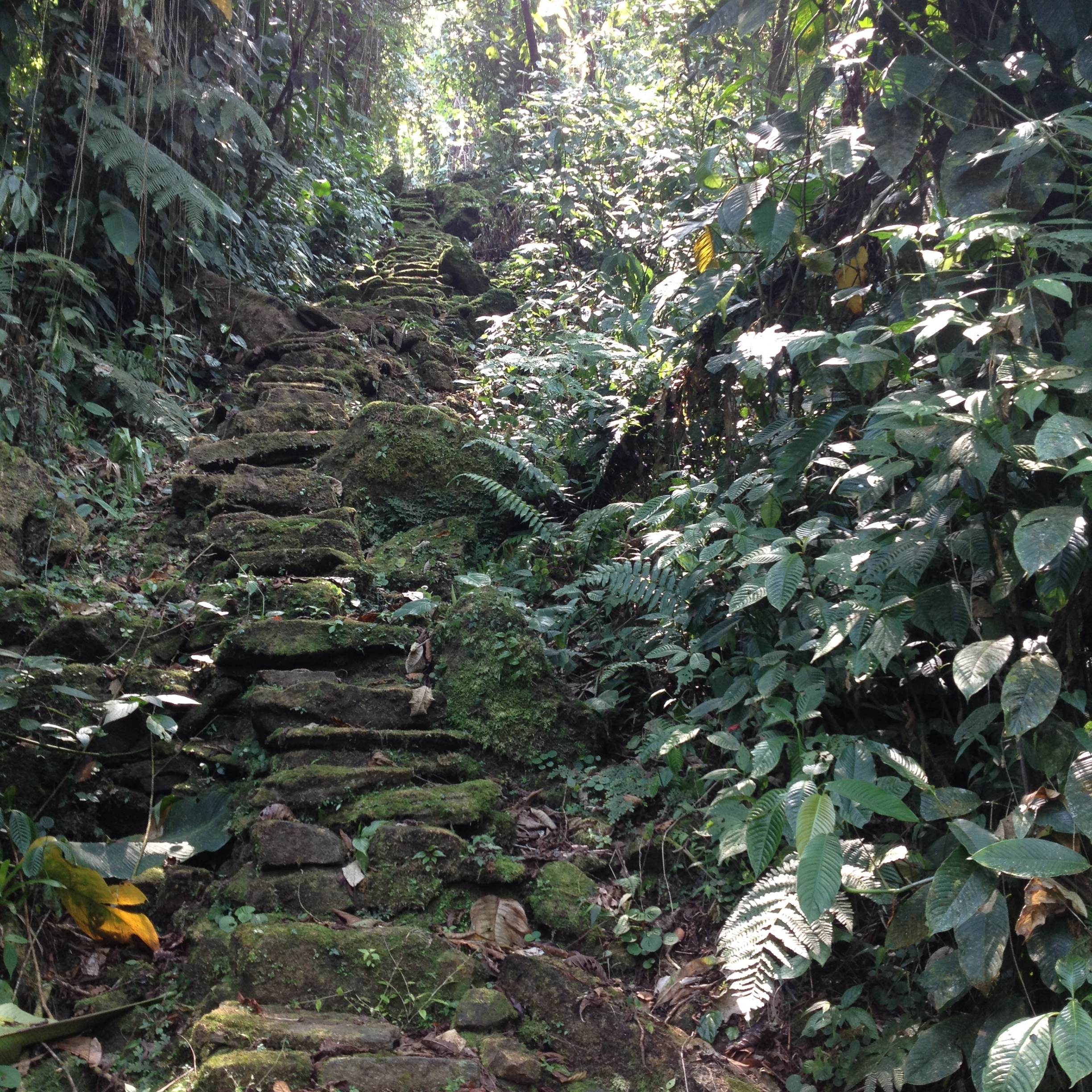 1200 steep rock steps lead to the Lost City.