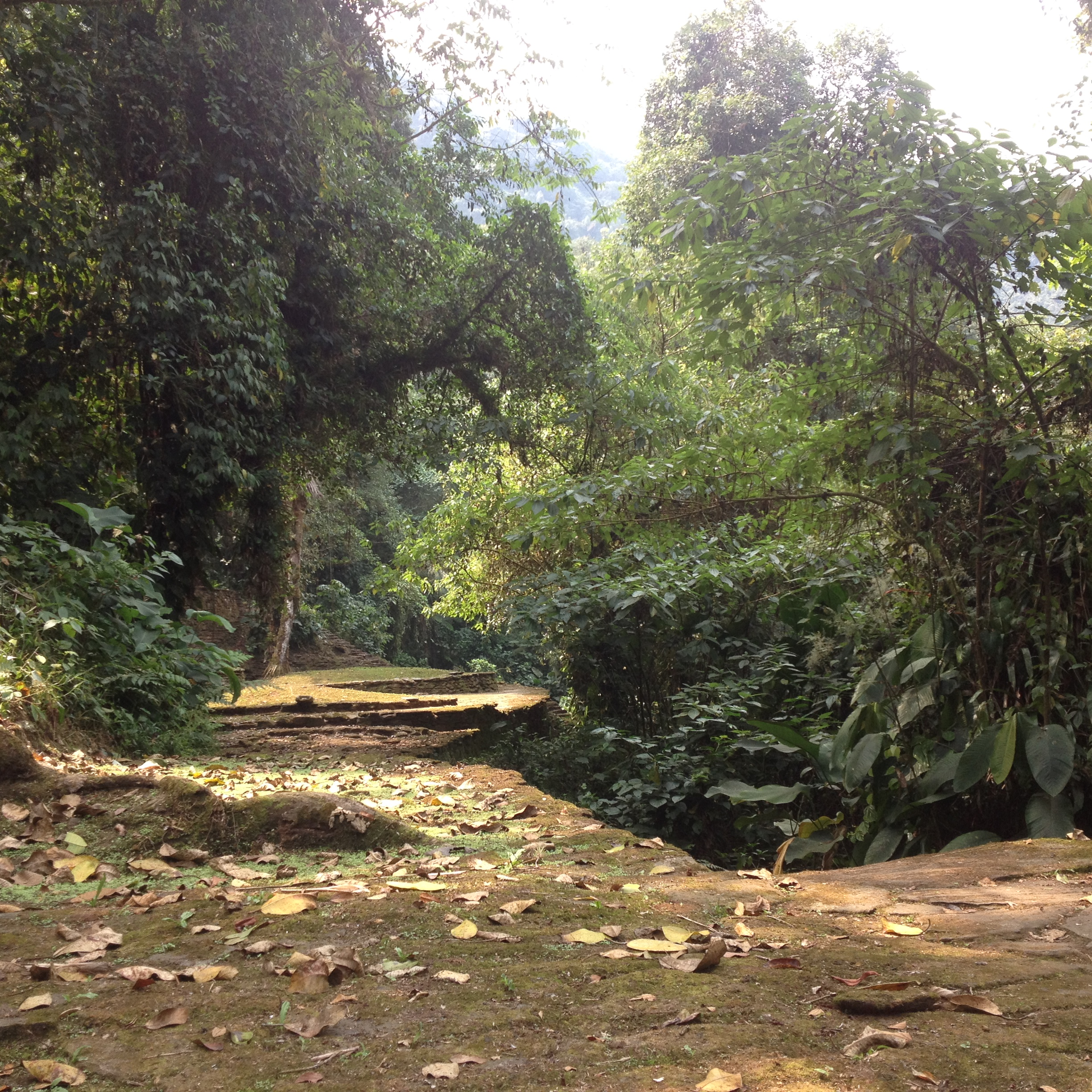 Sunshine at Ciudad Perdida