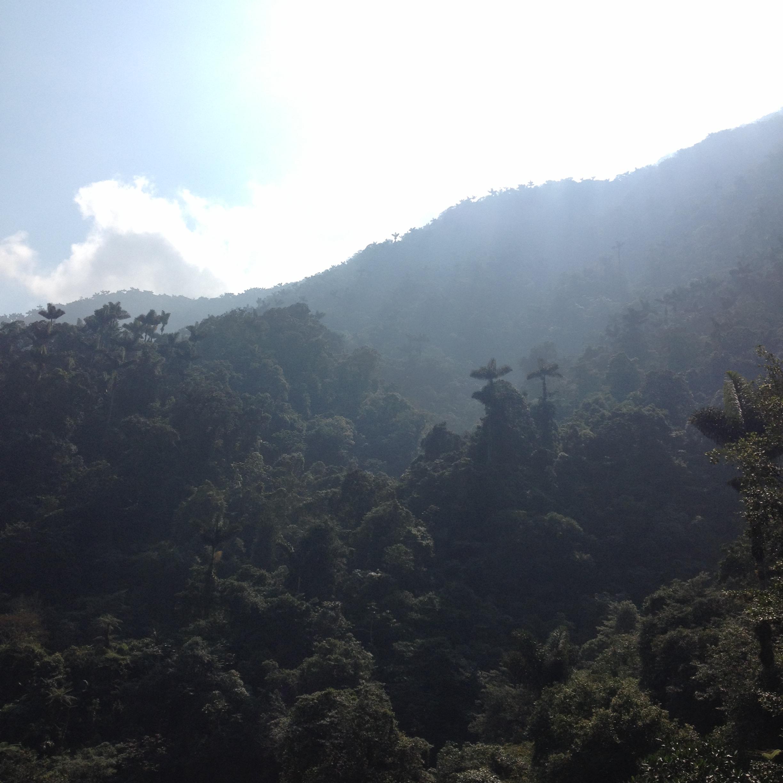 View from Ciudad Perdida